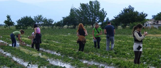 Ден на отворените врати във фермата на Надя Петкова от с. Труд