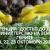 """VII-та КОНФЕРЕНЦИЯ """"ДОСТЪП ДО ДОБРА ХРАНА"""" ще се проведе онлайн на 21, 22, 23 октомври 2020"""